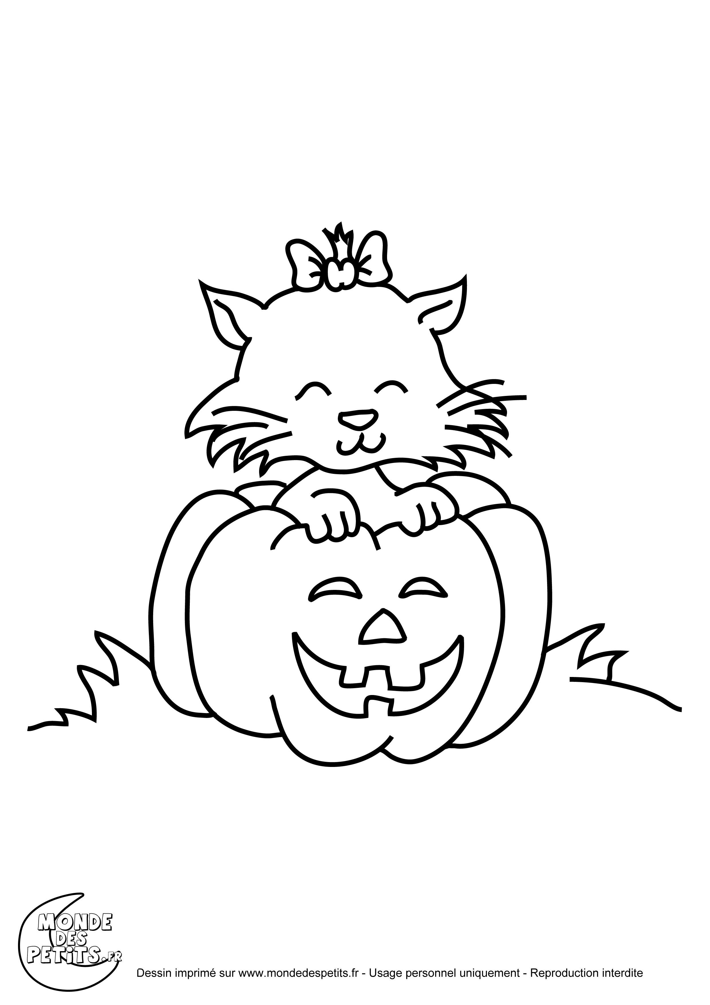 Impressionnant Dessin A Imprimer Halloween Gratuit