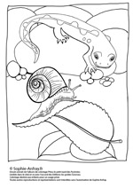 Coloriage d'escargot