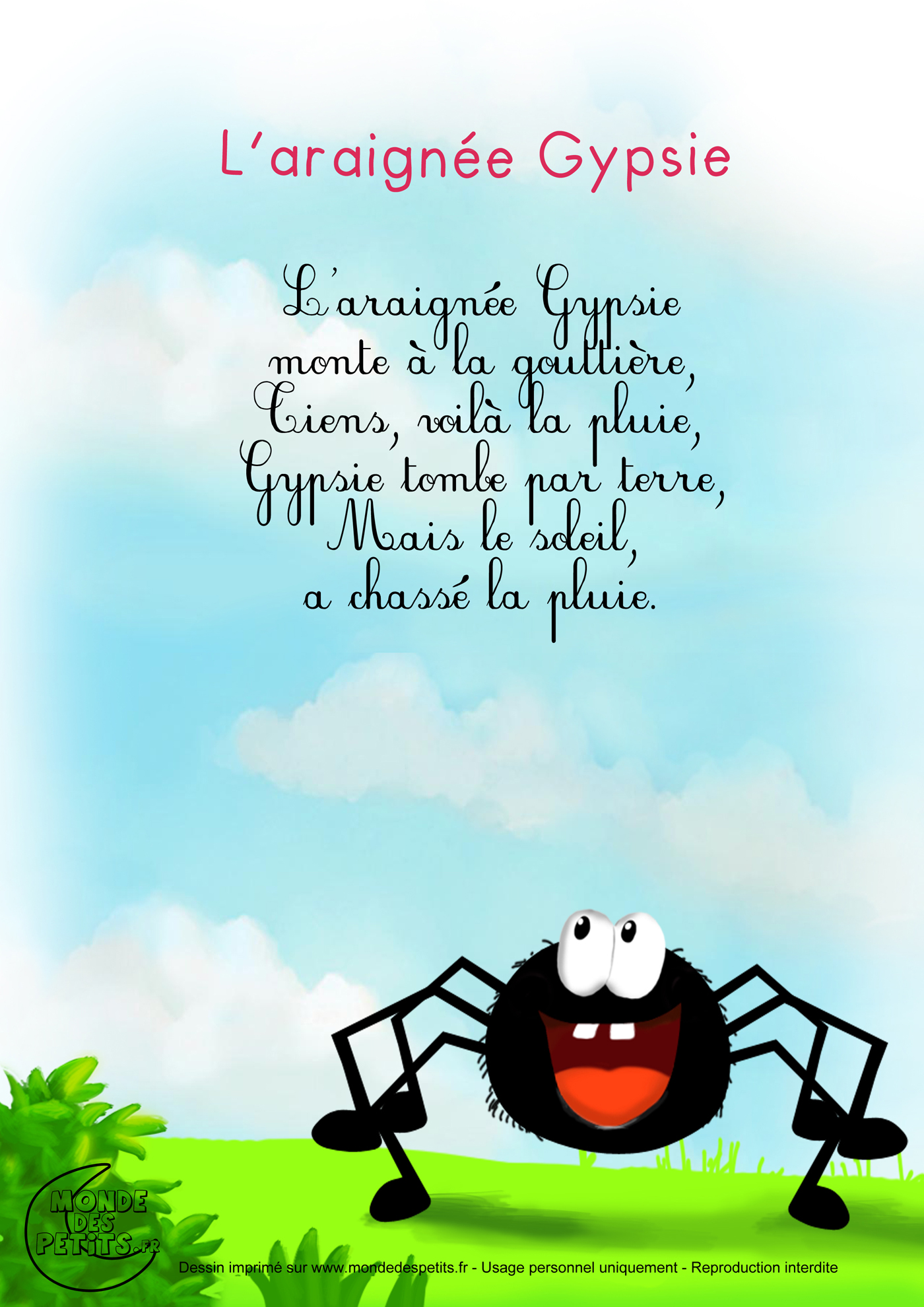 Araignée Gypsie 1