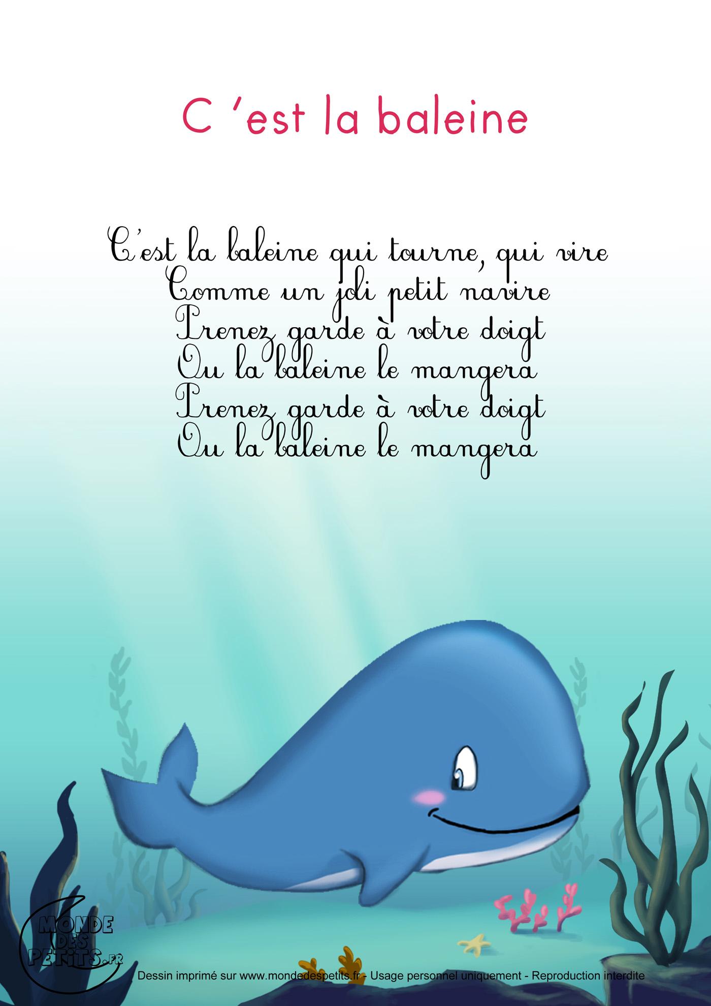 C'est la baleine 2
