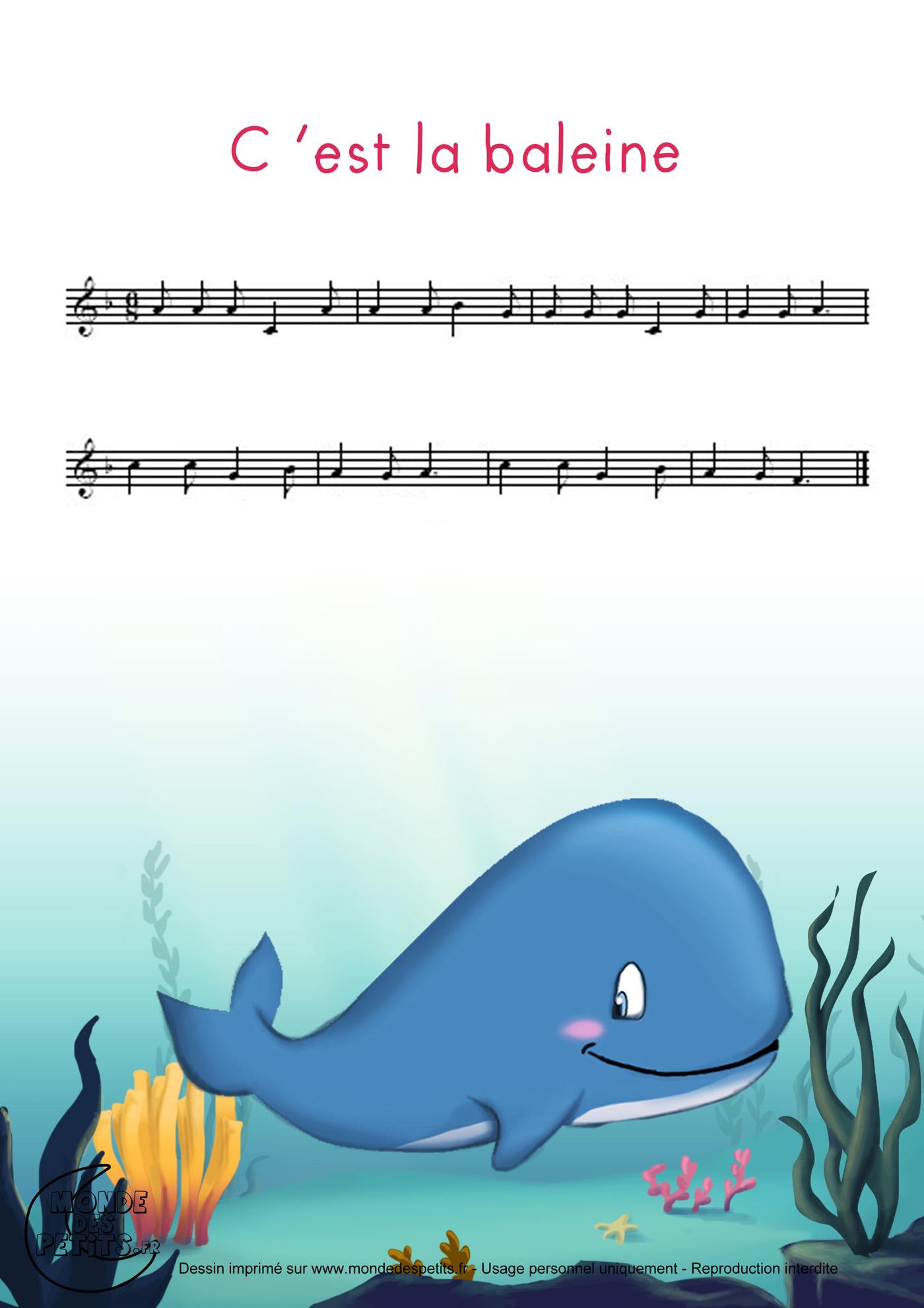 baleine, chanson, tourne, enfant, comptine, parole, partition, imprimer, vidéo, illustré,
